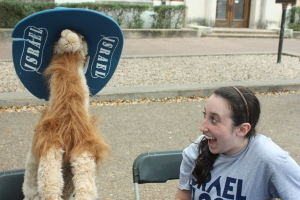 A student at the University of teas reacts to a stuffed camel being placed next to her at her information booth.